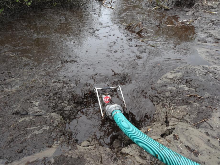 Pumpe Teichschlamm, teichschlamm abpumpen, Teich reinigen mit einer Mast ATP 20R,n